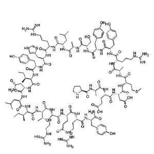Biotinyl-Neuropeptide Y
