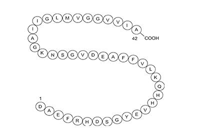 Beta-amyloid-Peptide (1-42)  CAS:107761-42-2 -Omizzur